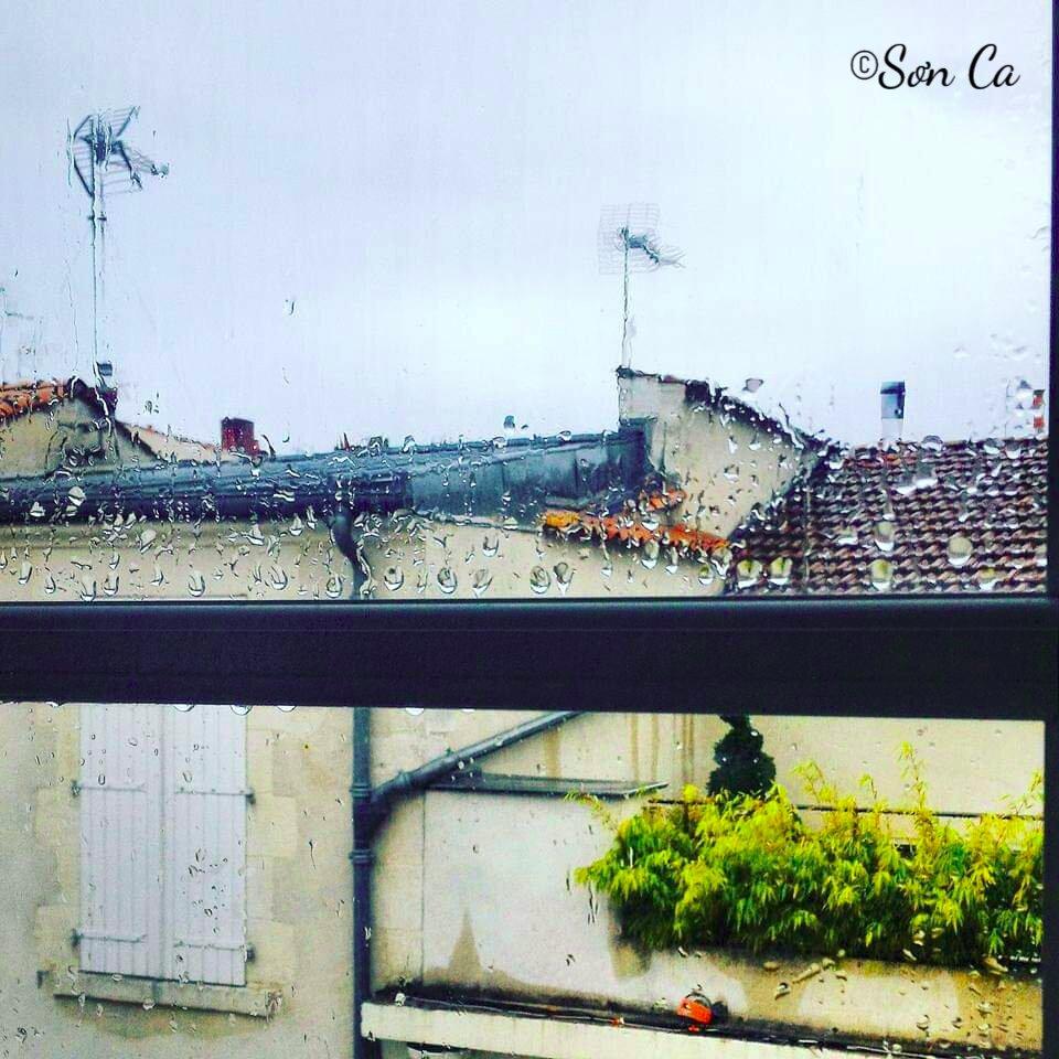 cửa sổ mưa